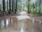 Rain and Writing…and Running
